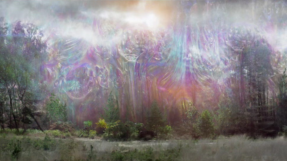 The shimmer as seen in the film Annihilation.
